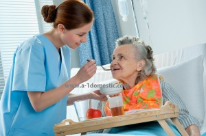 a-1 domestic hospice care caregiver